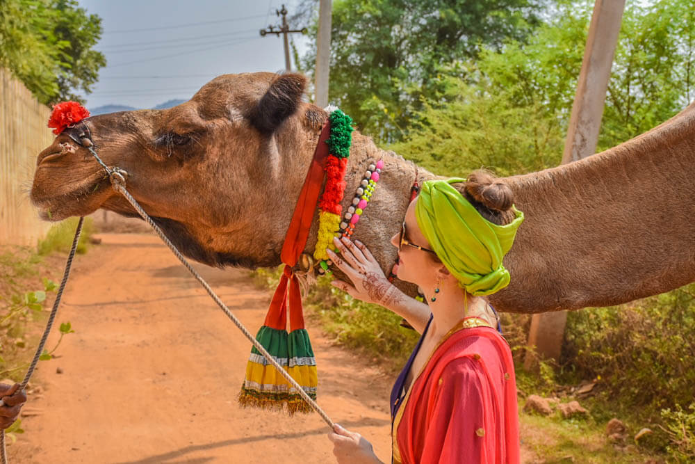 India photo tour including this photo of a girl and camel in Ranthambore