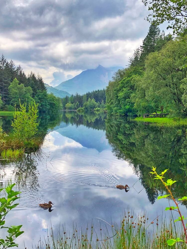 Loch Lommond in Glencoe Scotland with ducks swimming in the lake